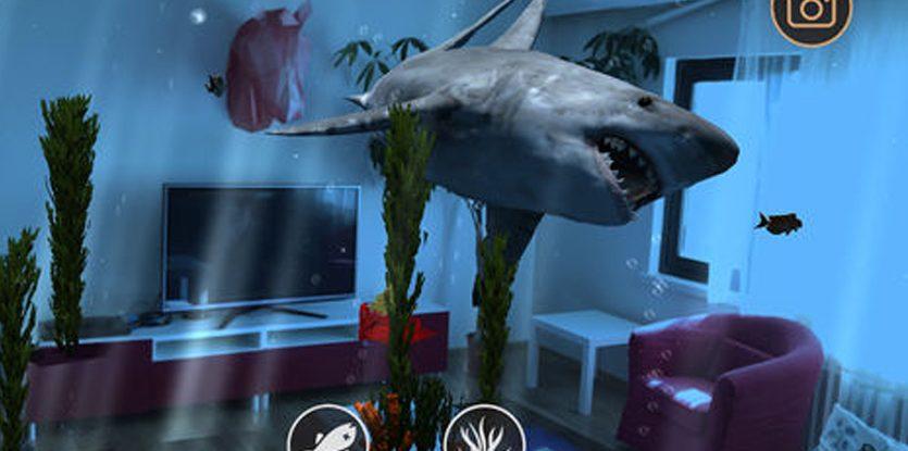 Shark-Deco